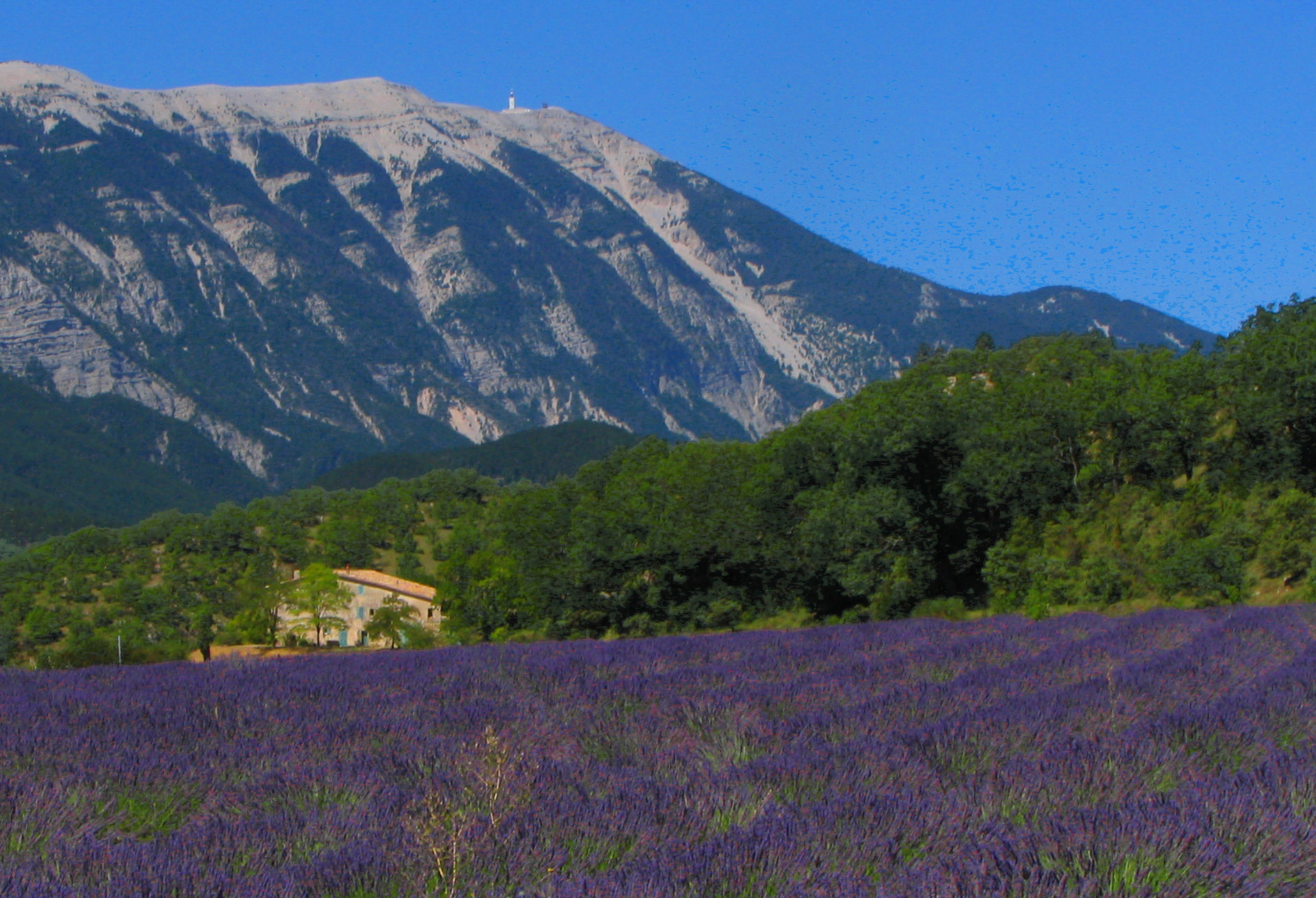 photo von Mont Ventoux
